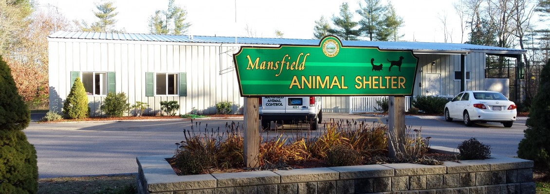 MansfieldAnimalShelter-4