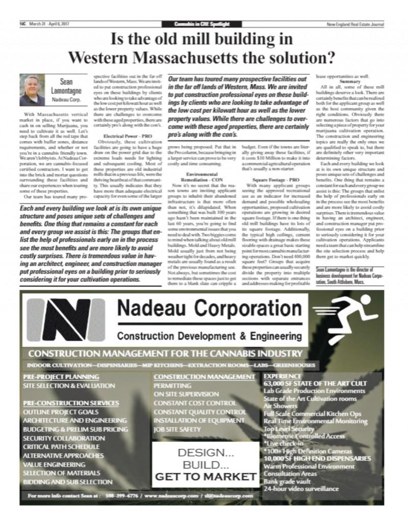 Nadeau Cannabis Article